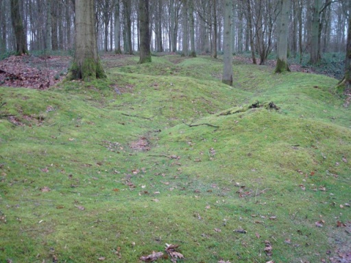 Former trenches at Delville Wood