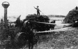 Swedish Immigrant Farming, 1882