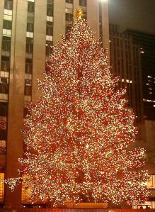The Christmas tree at Rockefeller Center