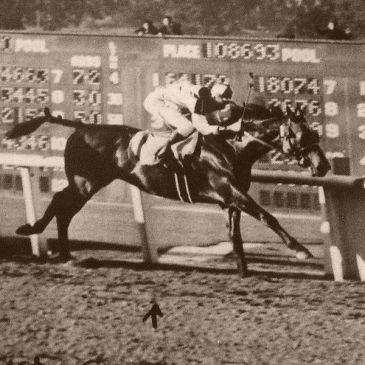 Seabiscuit at Santa Anita in 1940