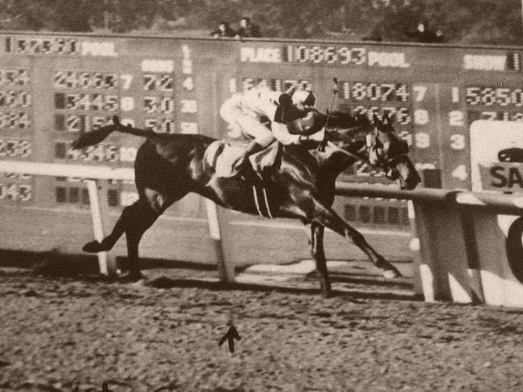 Seabiscuit at Santa Anita in 1940