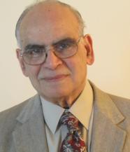 V. V. Raman