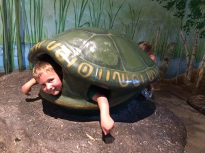 Isaiah as a turtle at the MN Children's Museum