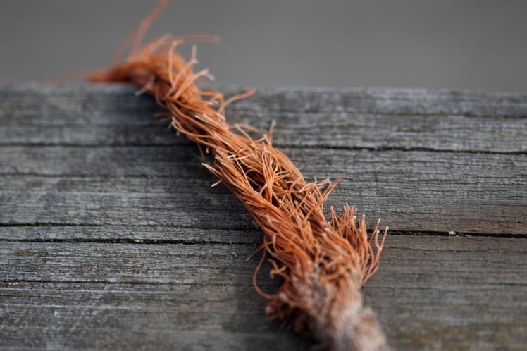 Frayed knot