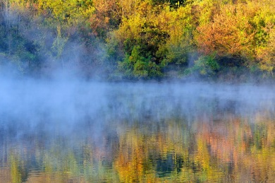 """Fall Reflections on a Foggy Morning"""