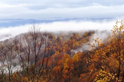 """Fall Rain in the Blue Ridge Mountains"""