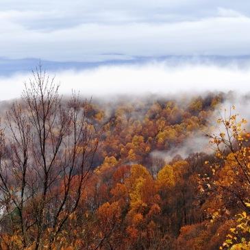 """Fall Rain in the Blue Ridge Mountains"""