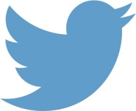 Larger Twitter logo