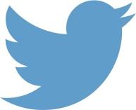 Larger Twitter logo