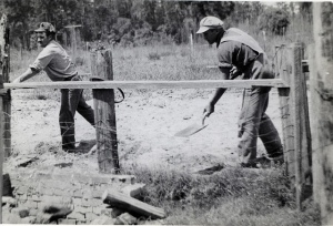 Conscientious objectors covering an old privy in Florida during WWII