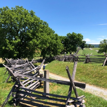 "Antietam's sunken road (or ""Bloody Lane"")"