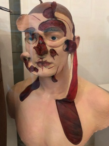 1918 plastic surgeon's facial model