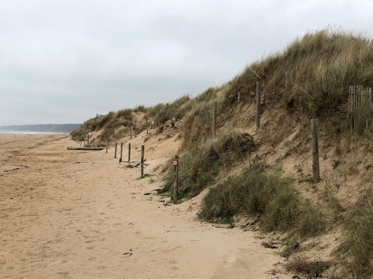 Dune on Omaha Beach
